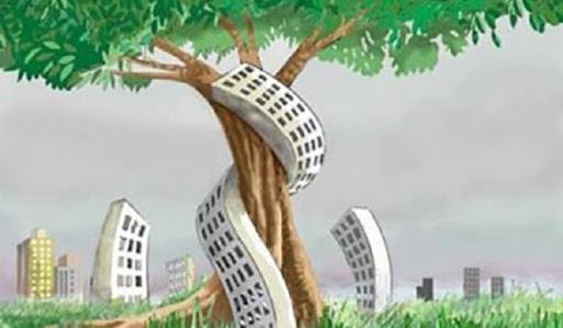 La cementificazione a danno dell'ambiente e della nostra salute!